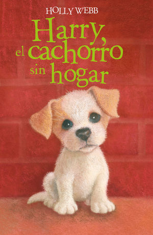HARRY, EL CACHORRO SIN HOGAR