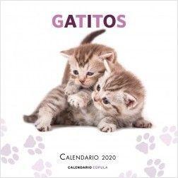 CALENDARIO PARED 2020 GATITOS